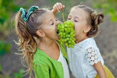 Festa dell'uva domenica con l'azienda agraria Guerrieri!