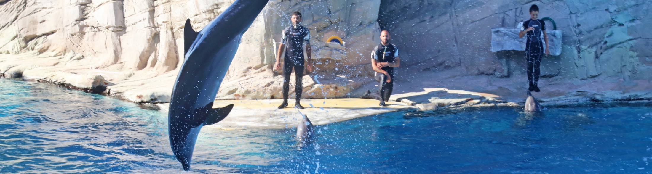 Laguna dei delfini torna aperta a Ottobre