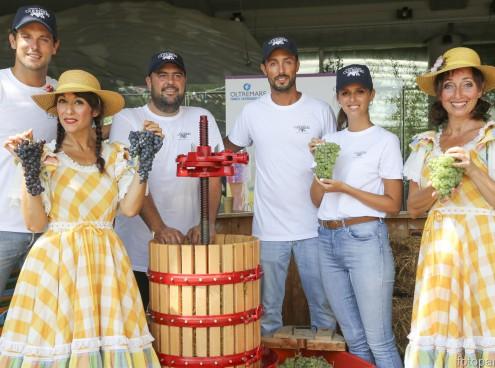 Nasce il vino di Oltremare, festa dell'uva 22 agosto