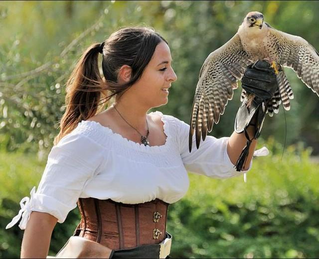 Falconeria, tradizione secolare