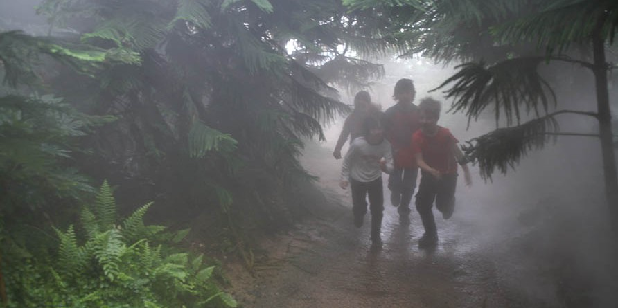 Darwin  Experience in the rainforest